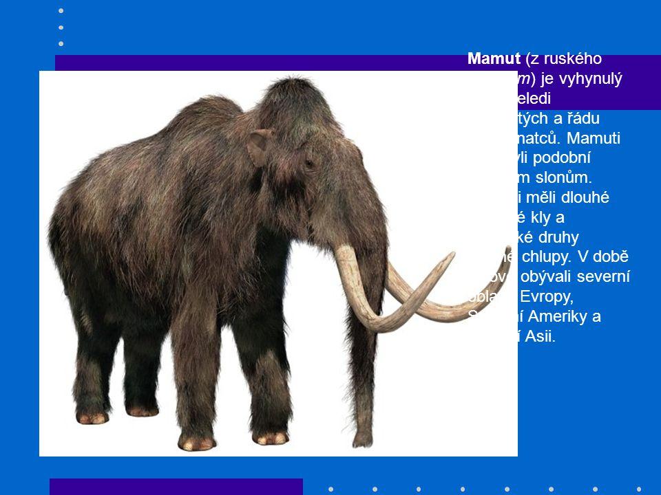 Mamut (z ruského мамонт) je vyhynulý rod z čeledi slonovitých a řádu chobotnatců.