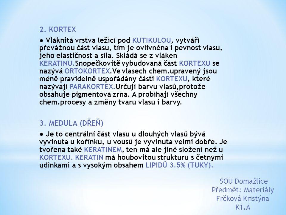 2. KORTEX