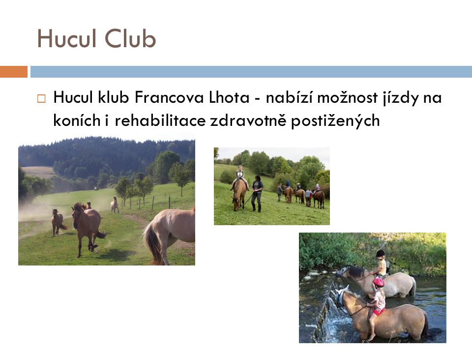 Hucul Club Hucul klub Francova Lhota - nabízí možnost jízdy na koních i rehabilitace zdravotně postižených.