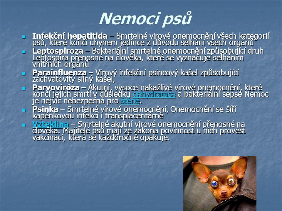 Nemoci psů Infekční hepatitida – Smrtelné virové onemocnění všech kategorií psů, které končí úhynem jedince z důvodu selhání všech orgánů.