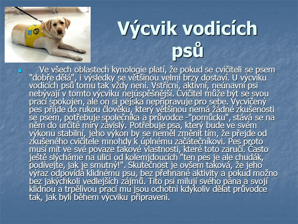 Výcvik vodicích psů