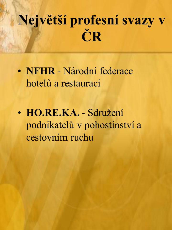 Největší profesní svazy v ČR