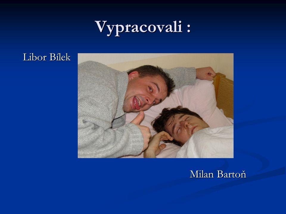 Vypracovali : Libor Bílek Milan Bartoň