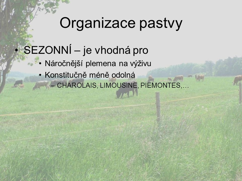 Organizace pastvy SEZONNÍ – je vhodná pro Náročnější plemena na výživu