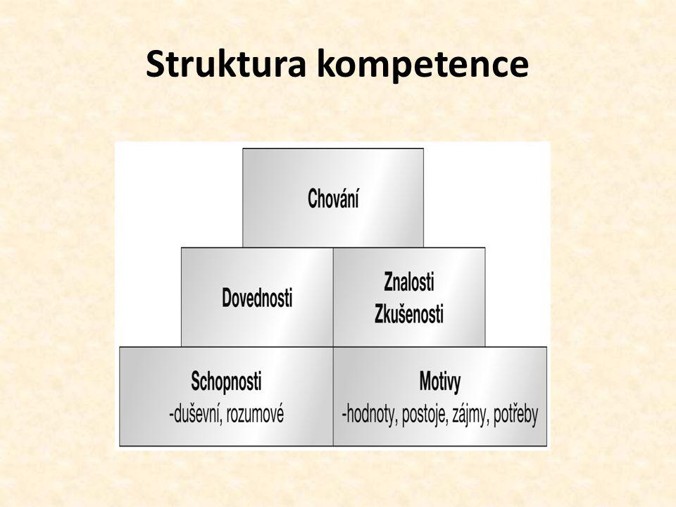 Struktura kompetence