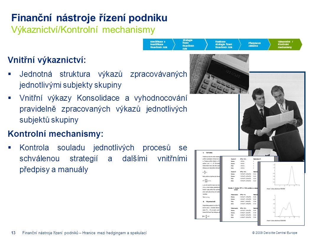 Finanční nástroje řízení podniku Výkaznictví/Kontrolní mechanismy