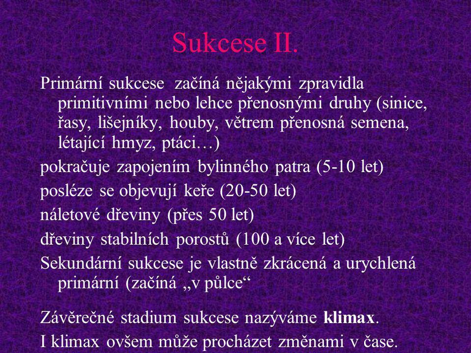 Sukcese II.