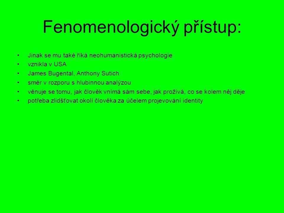 Fenomenologický přístup: