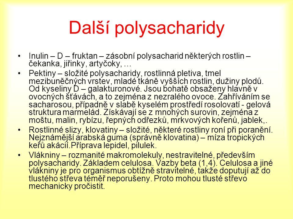 Další polysacharidy Inulin – D – fruktan – zásobní polysacharid některých rostlin – čekanka, jiřinky, artyčoky, …
