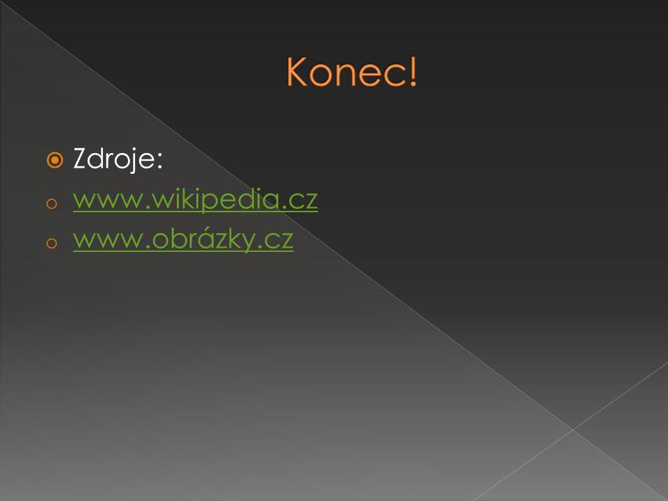 Konec! Zdroje: www.wikipedia.cz www.obrázky.cz
