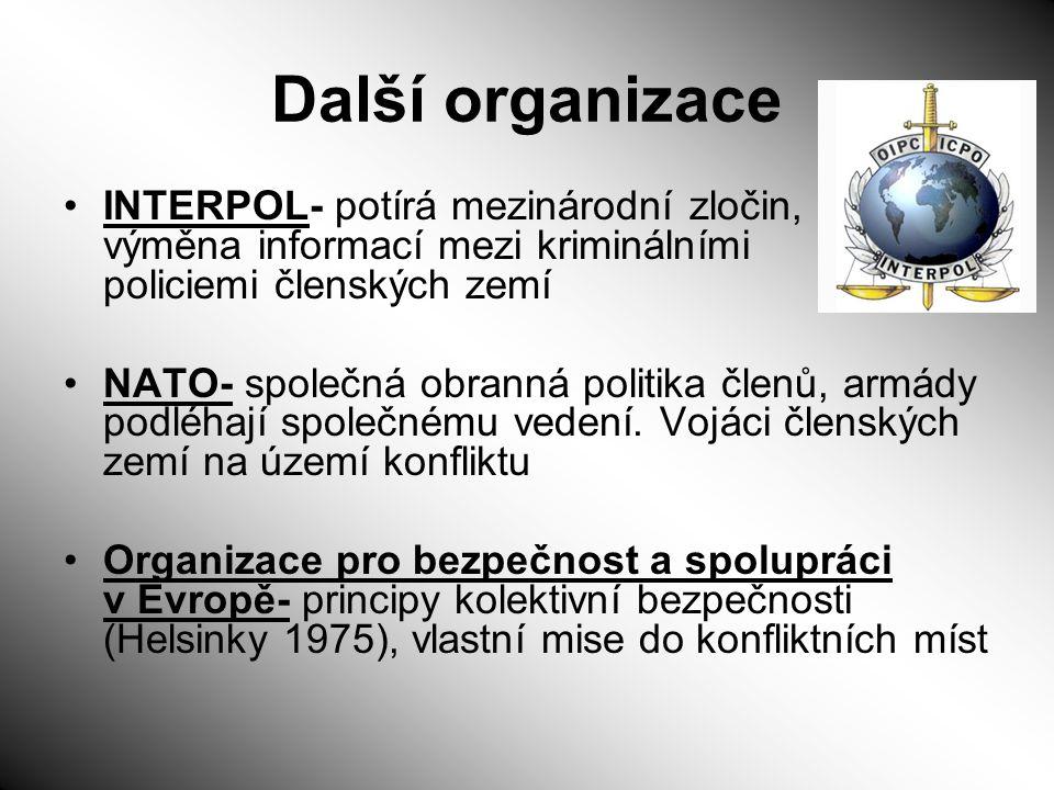 Další organizace INTERPOL- potírá mezinárodní zločin, výměna informací mezi kriminálními policiemi členských zemí.