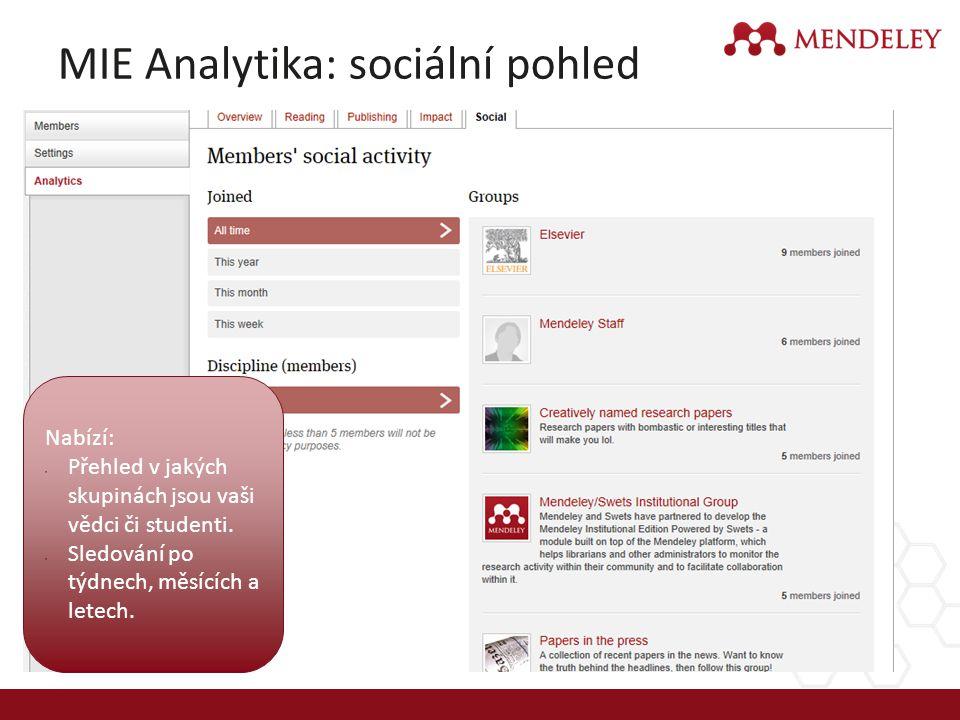 MIE Analytika: sociální pohled
