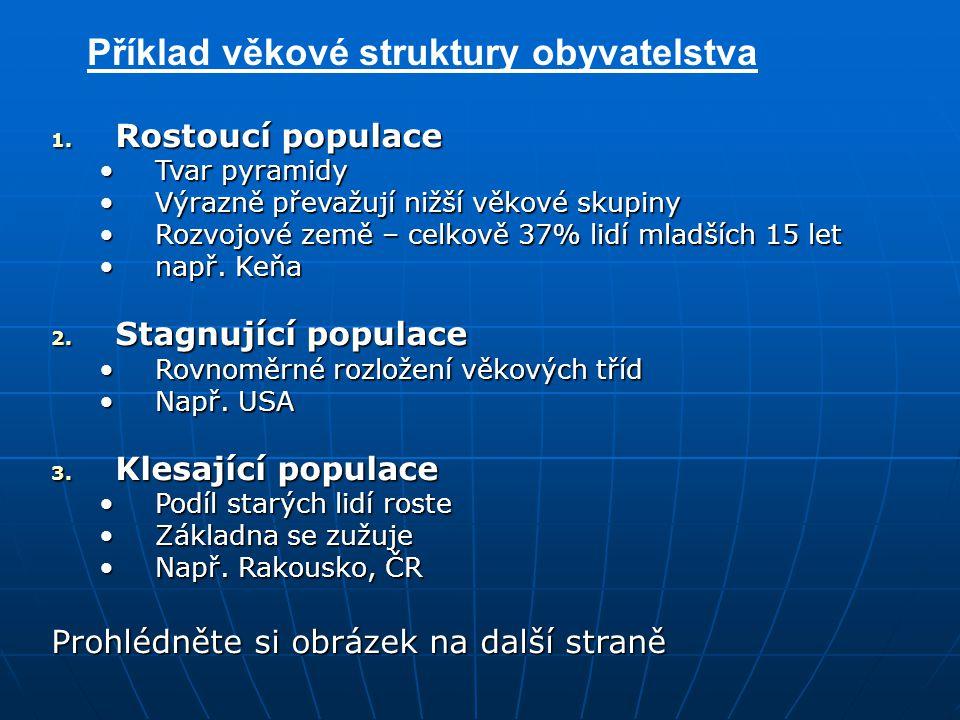 Příklad věkové struktury obyvatelstva