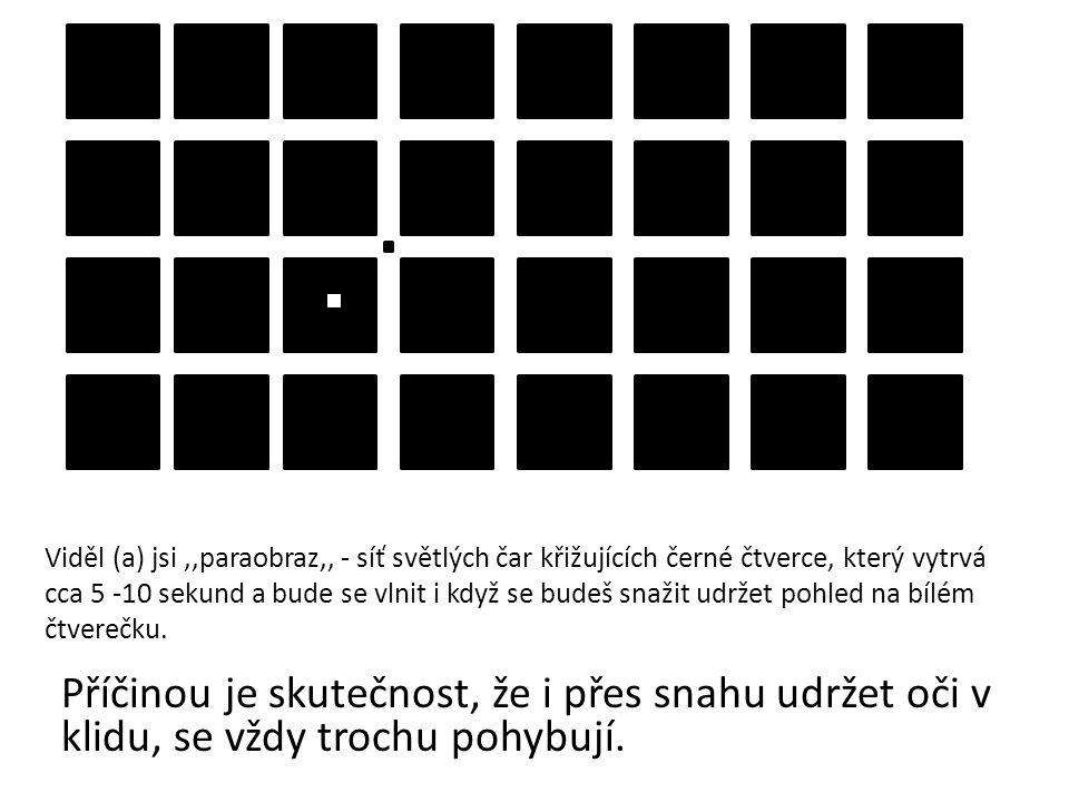 Viděl (a) jsi ,,paraobraz,, - síť světlých čar křižujících černé čtverce, který vytrvá cca 5 -10 sekund a bude se vlnit i když se budeš snažit udržet pohled na bílém čtverečku.