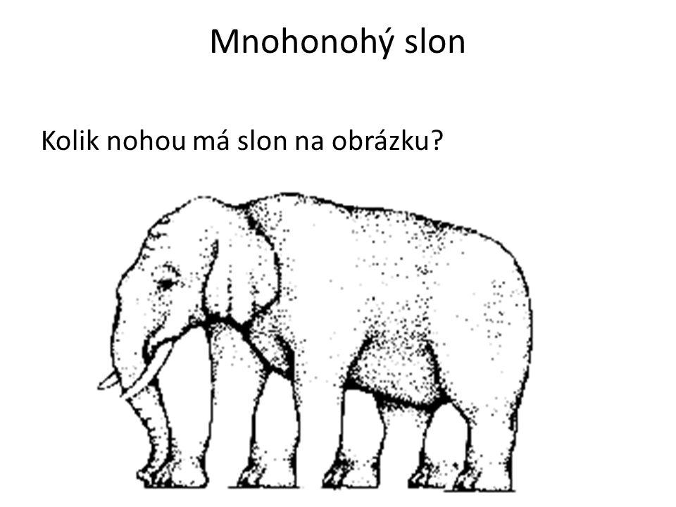 Mnohonohý slon Kolik nohou má slon na obrázku