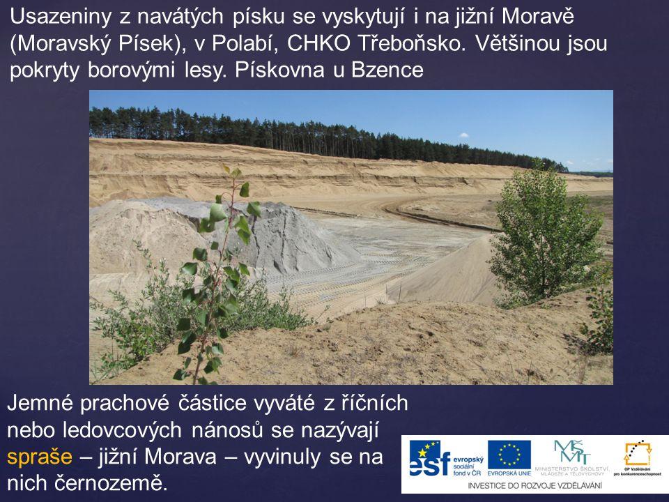 Usazeniny z navátých písku se vyskytují i na jižní Moravě (Moravský Písek), v Polabí, CHKO Třeboňsko. Většinou jsou pokryty borovými lesy. Pískovna u Bzence