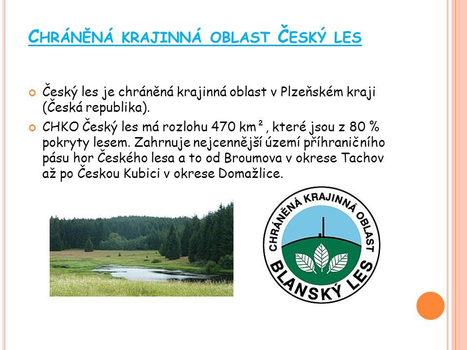 Chráněná krajinná oblast Český les