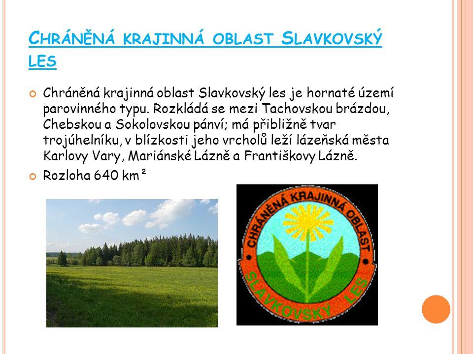 Chráněná krajinná oblast Slavkovský les