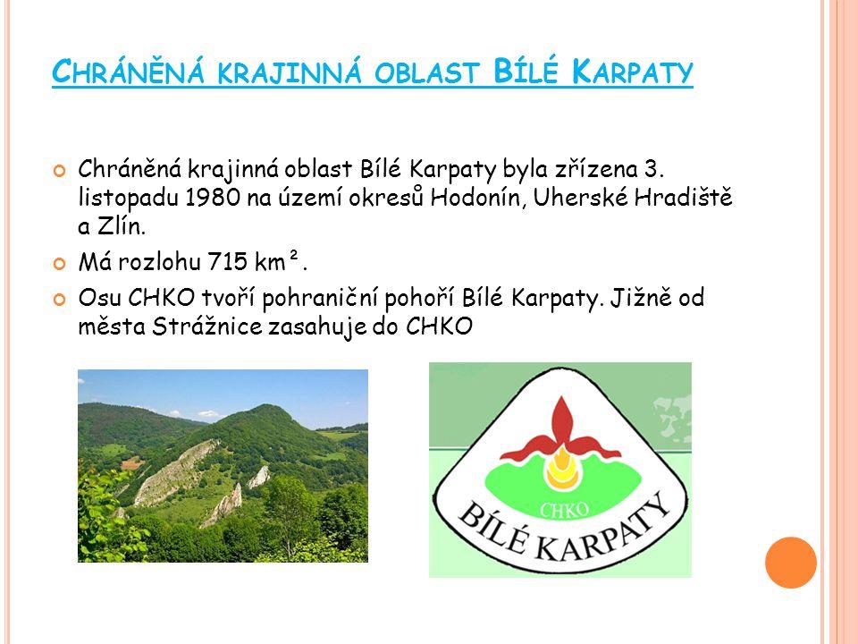Chráněná krajinná oblast Bílé Karpaty
