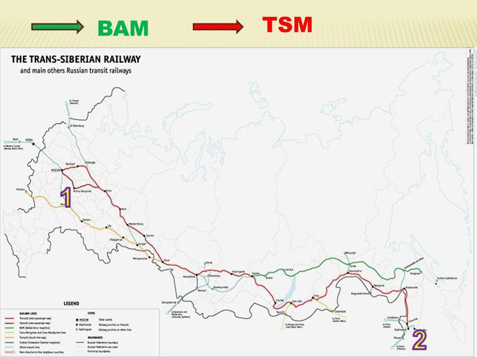 TSM BAM 1 2