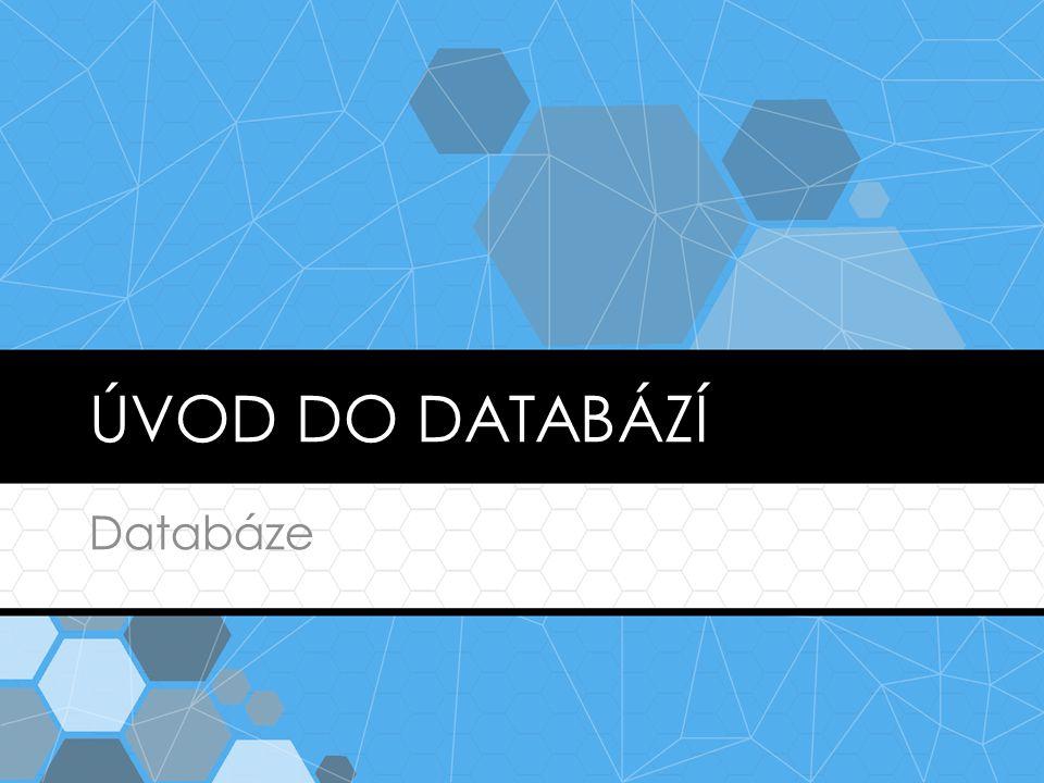Úvod do databází Databáze