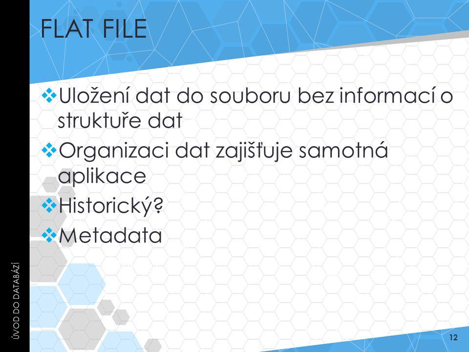 Flat File Uložení dat do souboru bez informací o struktuře dat