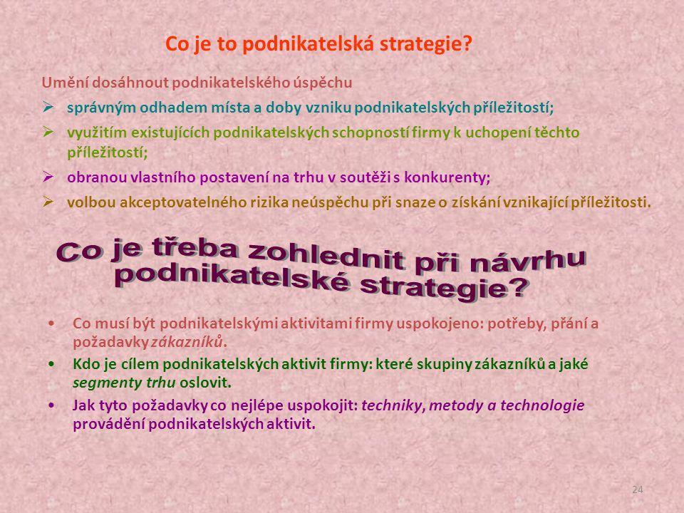 Co je to podnikatelská strategie