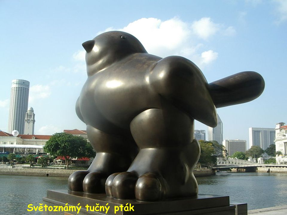 Světoznámý tučný pták