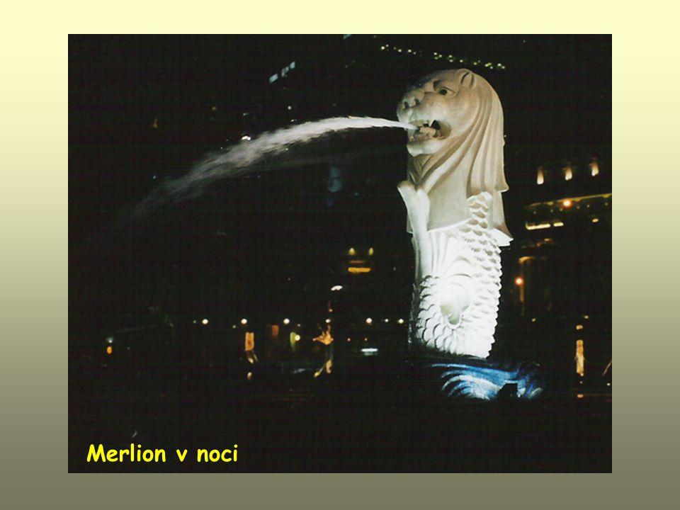 Merlion v noci