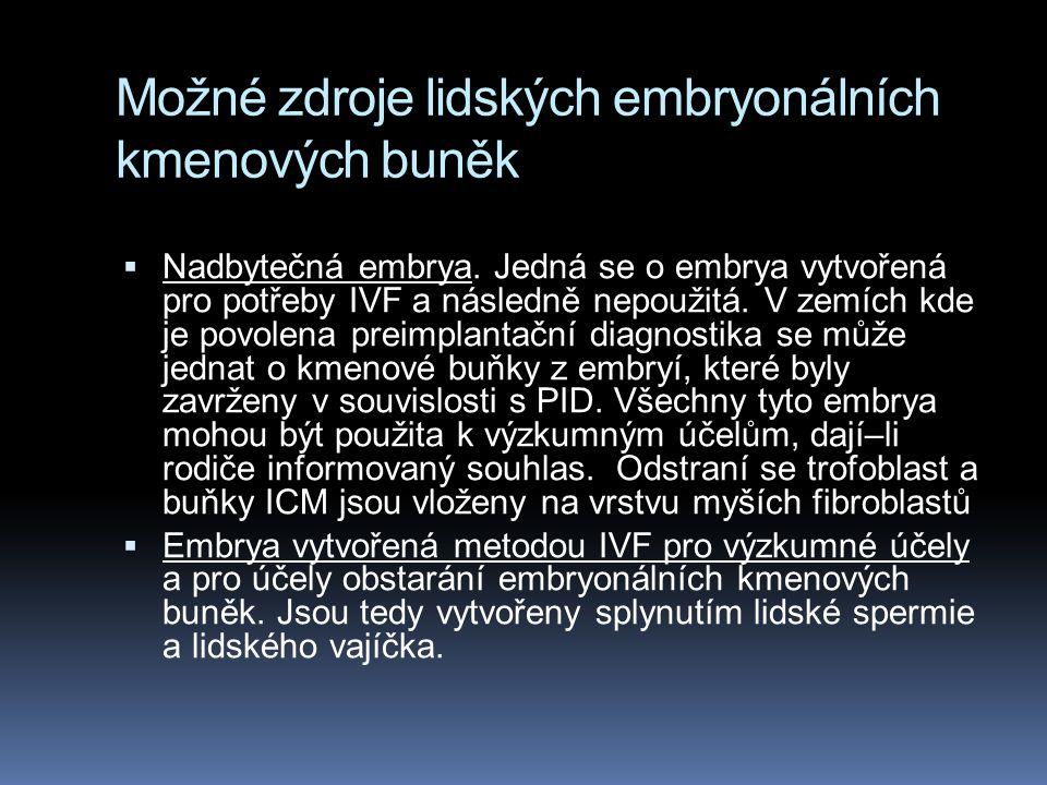 Možné zdroje lidských embryonálních kmenových buněk