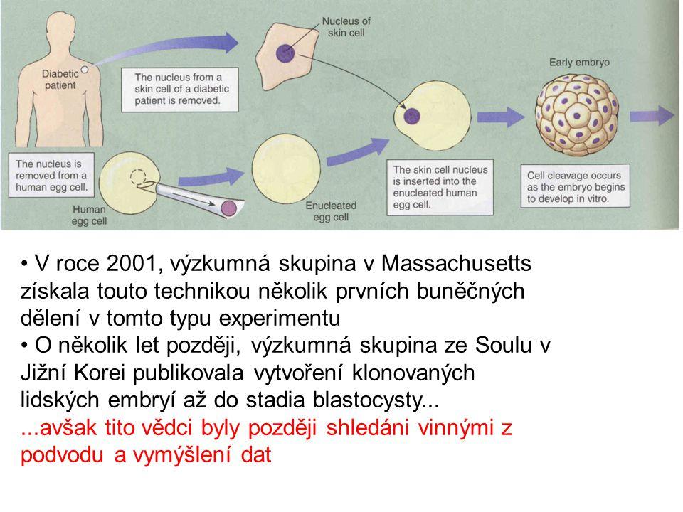 V roce 2001, výzkumná skupina v Massachusetts získala touto technikou několik prvních buněčných dělení v tomto typu experimentu