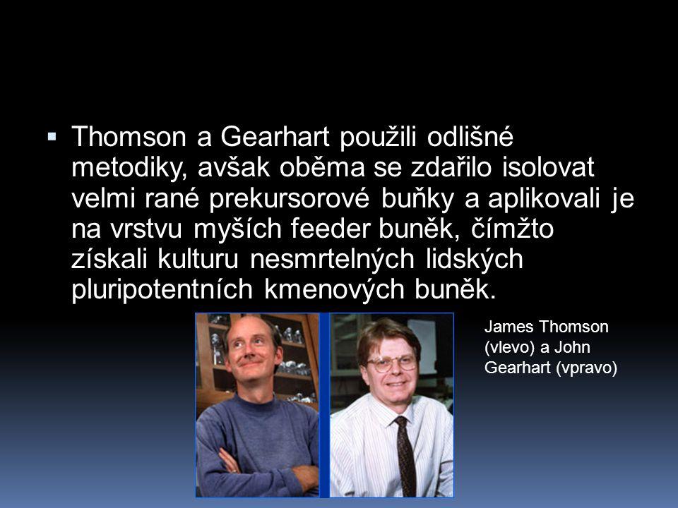 Thomson a Gearhart použili odlišné metodiky, avšak oběma se zdařilo isolovat velmi rané prekursorové buňky a aplikovali je na vrstvu myších feeder buněk, čímžto získali kulturu nesmrtelných lidských pluripotentních kmenových buněk.