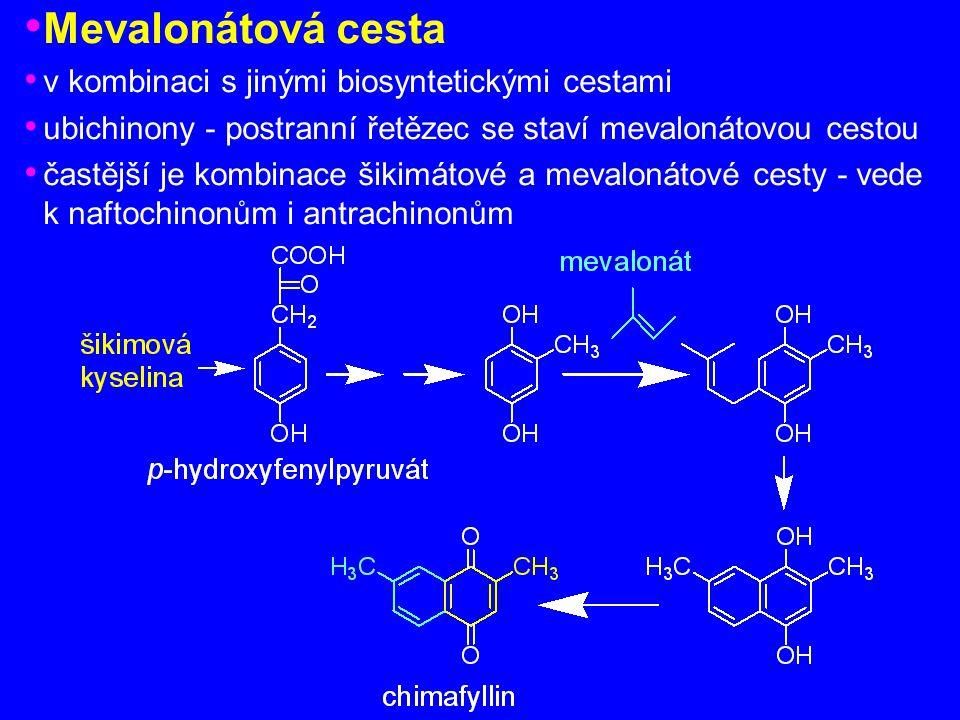 Mevalonátová cesta v kombinaci s jinými biosyntetickými cestami