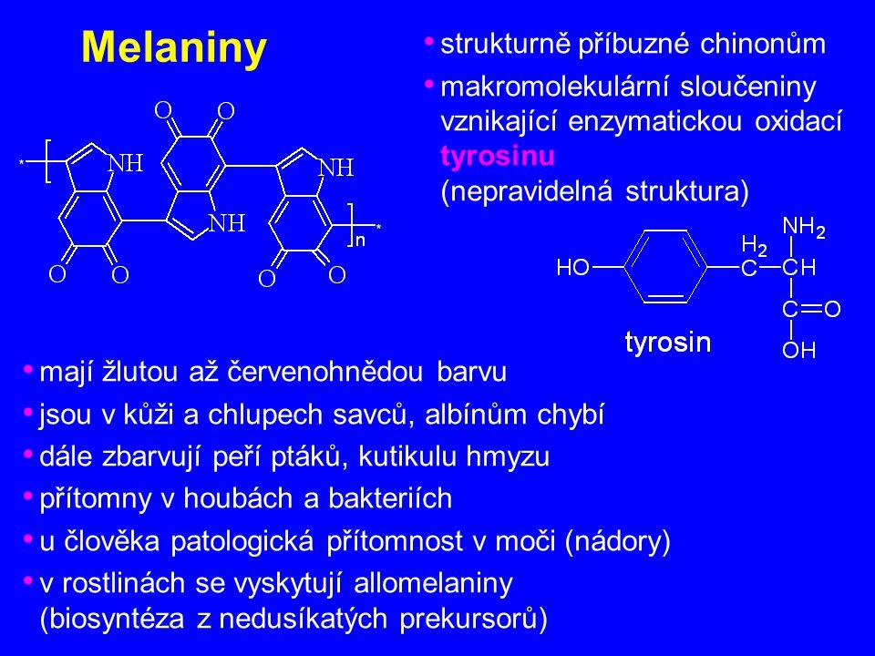 Melaniny strukturně příbuzné chinonům