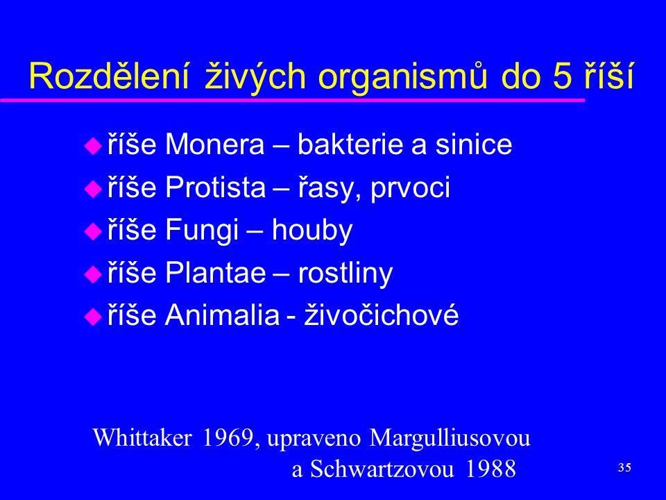 Rozdělení živých organismů do 5 říší