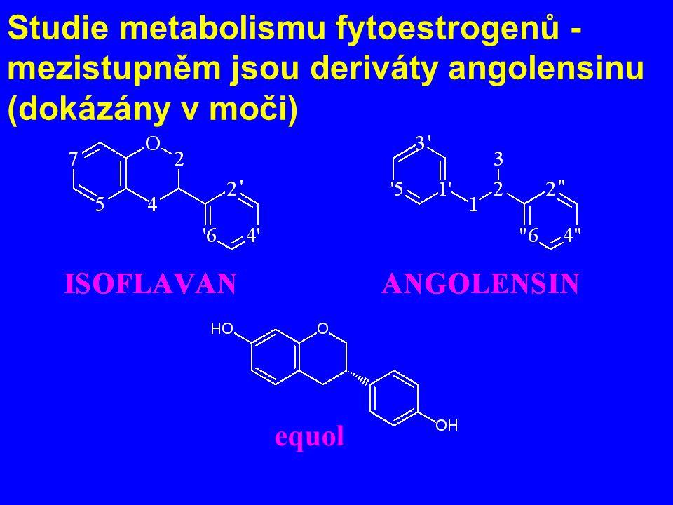 Studie metabolismu fytoestrogenů - mezistupněm jsou deriváty angolensinu (dokázány v moči)