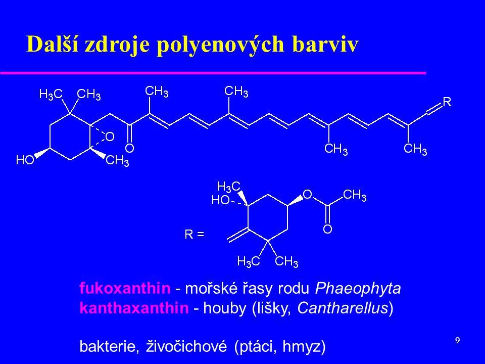 Další zdroje polyenových barviv