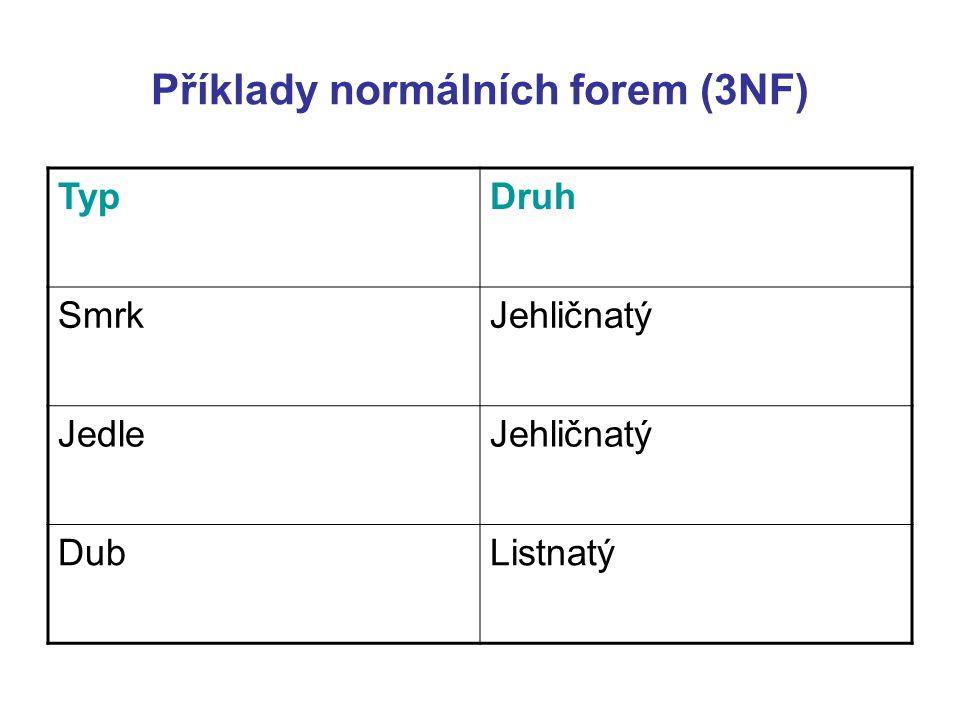 Příklady normálních forem (3NF)