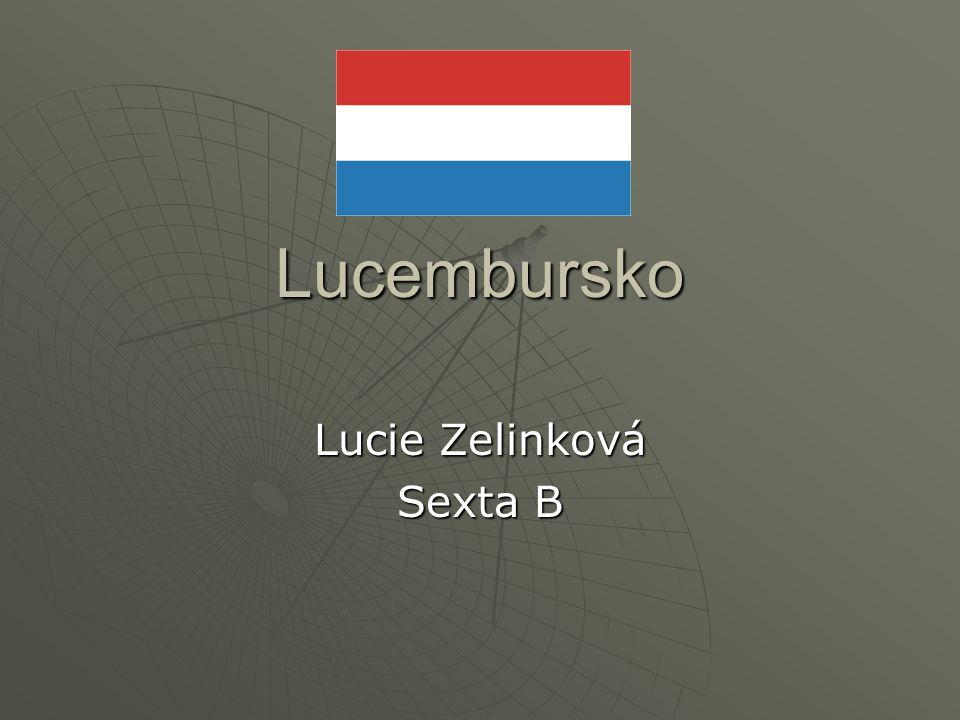 Lucie Zelinková Sexta B