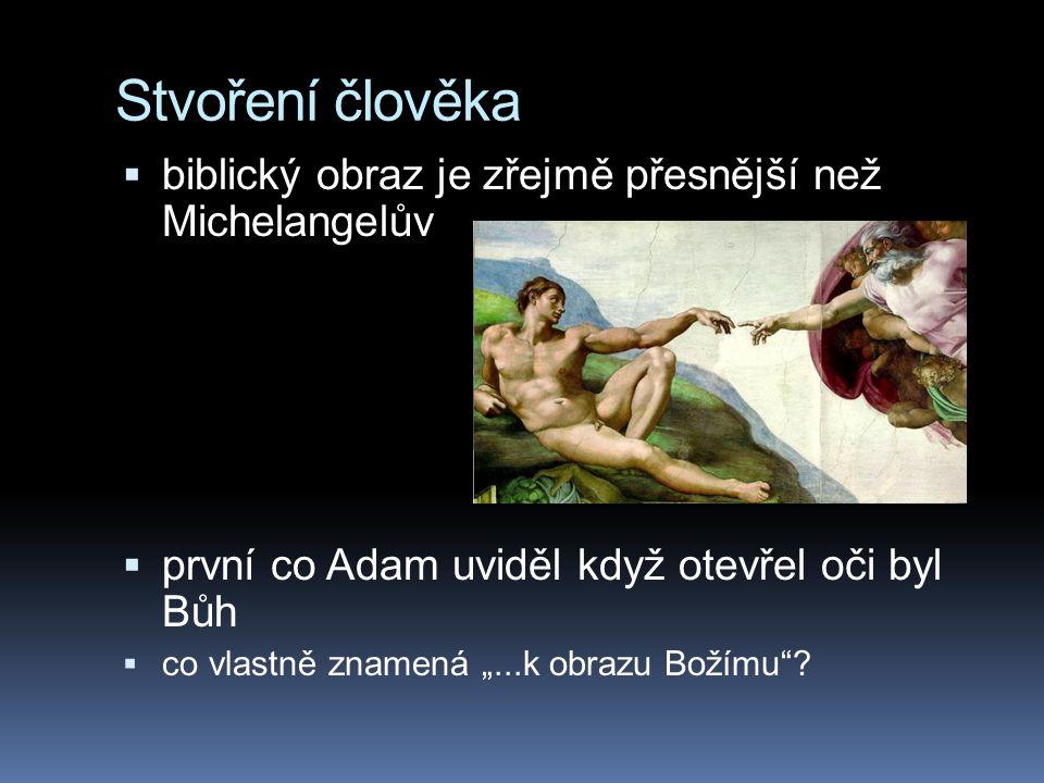 Stvoření člověka biblický obraz je zřejmě přesnější než Michelangelův