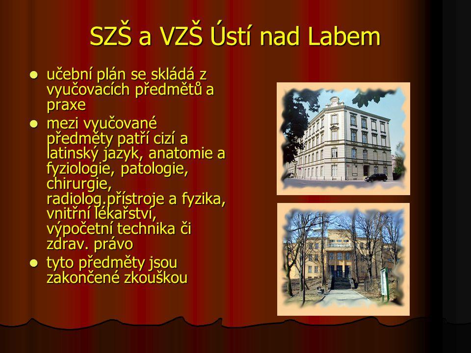 SZŠ a VZŠ Ústí nad Labem učební plán se skládá z vyučovacích předmětů a praxe.