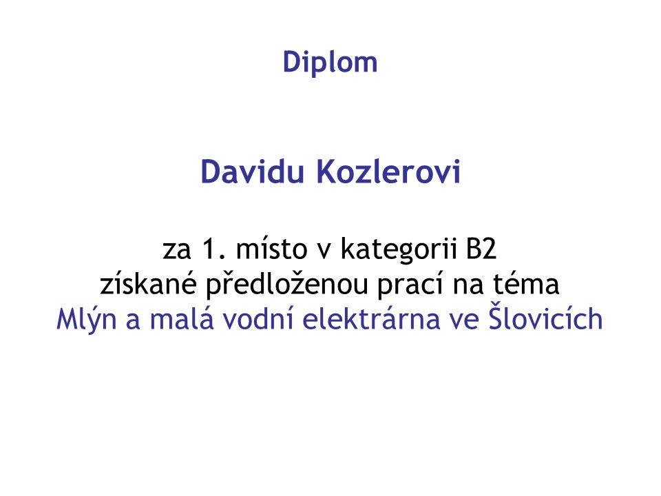 Davidu Kozlerovi Diplom za 1. místo v kategorii B2