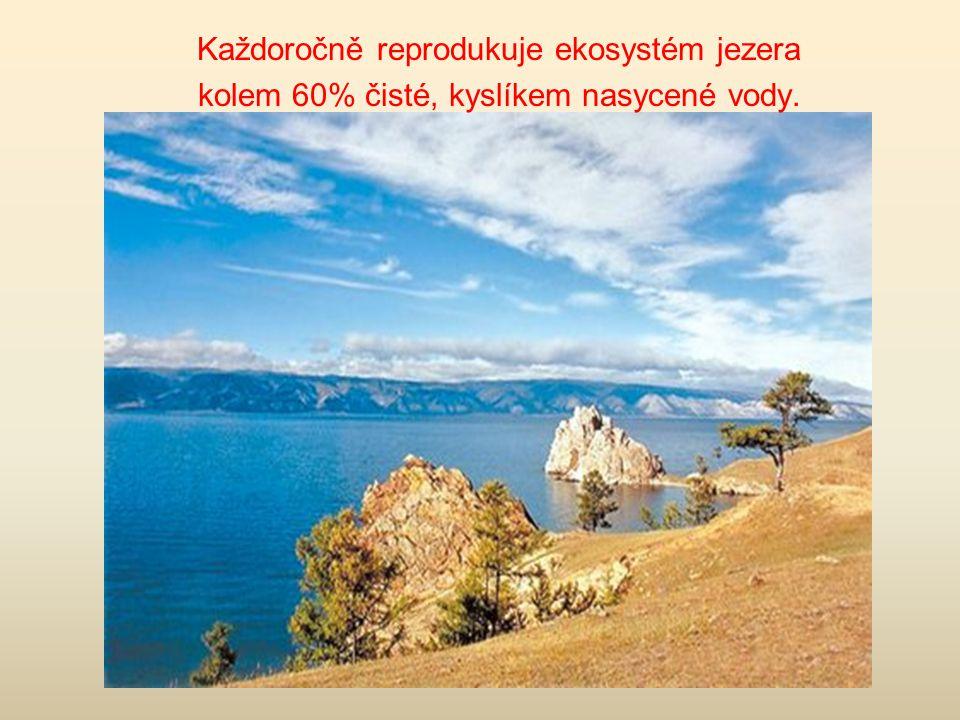 Každoročně reprodukuje ekosystém jezera