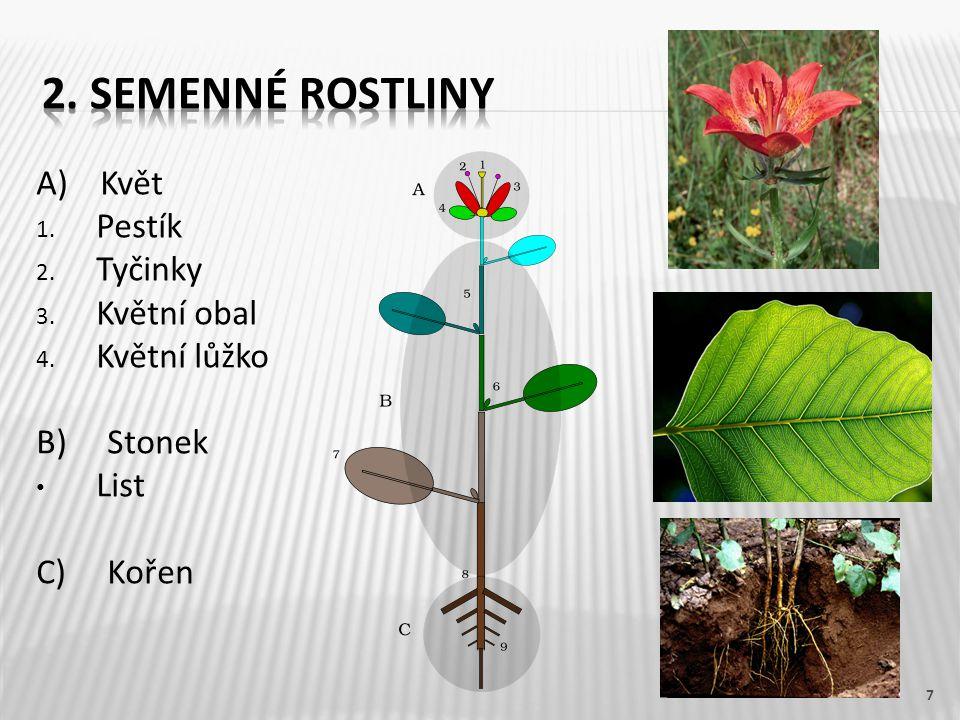 2. Semenné rostliny A) Květ Pestík Tyčinky Květní obal Květní lůžko