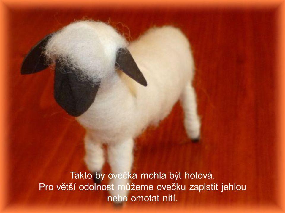 Takto by ovečka mohla být hotová.