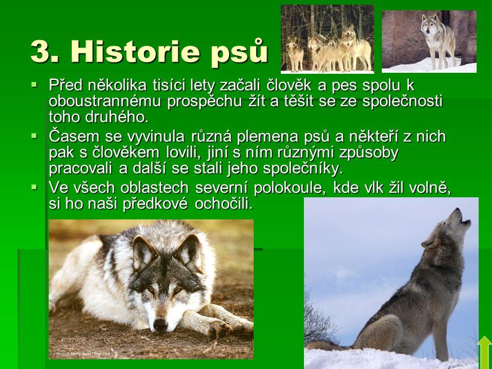3. Historie psů Před několika tisíci lety začali člověk a pes spolu k oboustrannému prospěchu žít a těšit se ze společnosti toho druhého.