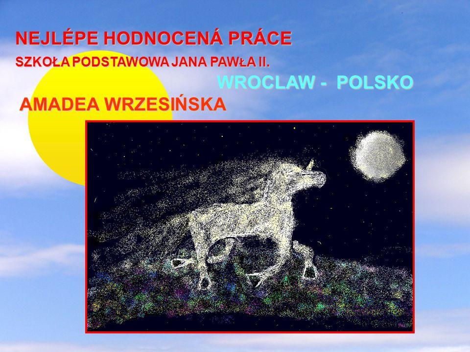 NEJLÉPE HODNOCENÁ PRÁCE SZKOŁA PODSTAWOWA JANA PAWŁA II.