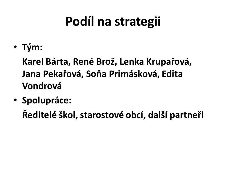 Podíl na strategii Tým: