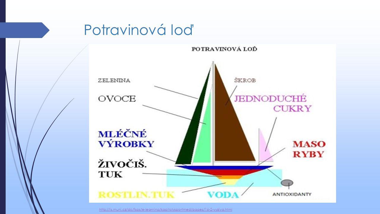 Potravinová loď http://is.muni.cz/do/fsps/e-learning/kapitolysportmed/pages/16-2-vyziva.html