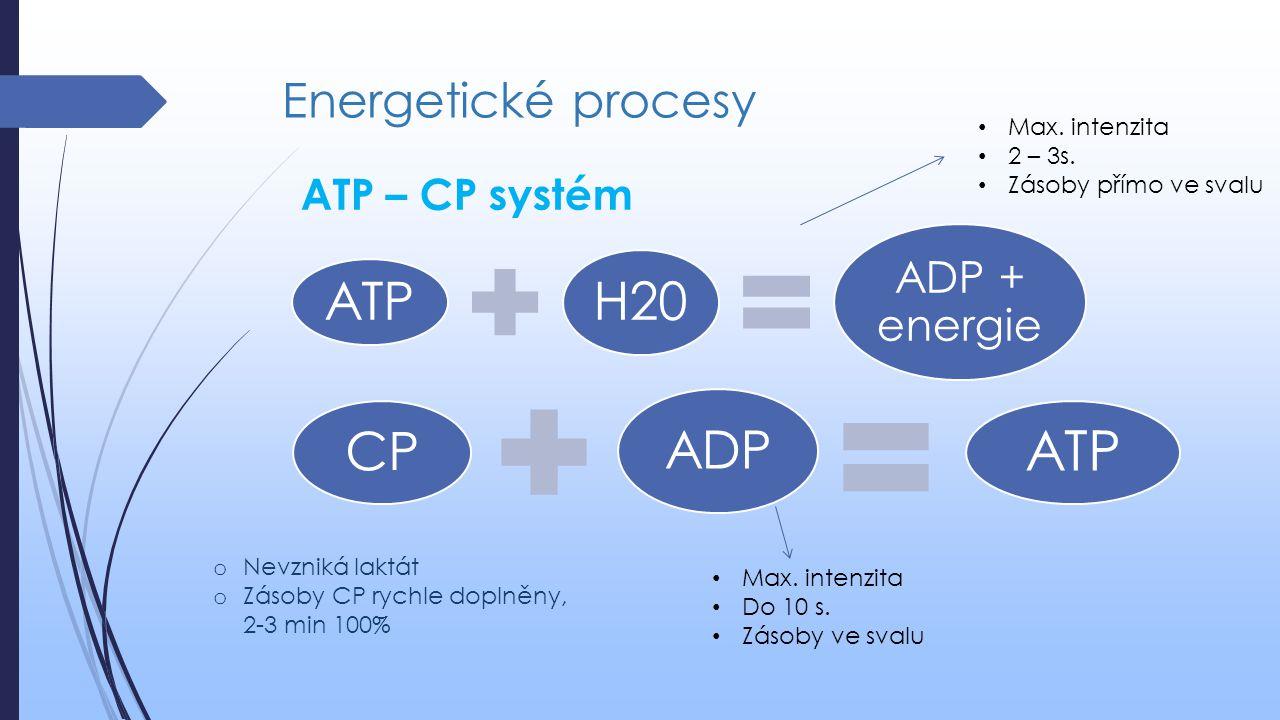 ATP H20 CP ADP Energetické procesy ATP – CP systém Max. intenzita